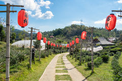 Pathway decorate with red chinese lantern Stock Photography