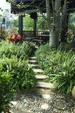 Pathway through edible garden Stock Image
