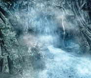 Pathway in an enchanted forest. Enchanted dark forest with a pathway and fog Stock Photo
