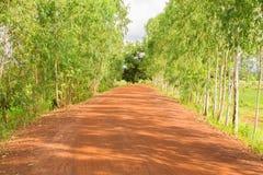 Pathway in the farm Stock Photos