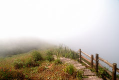 Pathway in the fog Stock Photography