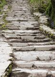 Pathway through a Forest. Stone Steps in the Woods Royalty Free Stock Photos