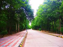 Pathway in forest with trees both side. Nature and development in harmony. Well developed Pathway through forest with proper cement road and footpath on both stock photos