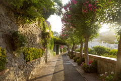 Pathway full of flowers on Capri Island, Italy Stock Photo