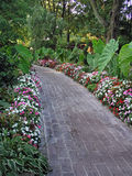 Pathway in a garden. Brick walkway Royalty Free Stock Image