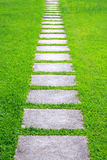 Pathway in the garden Royalty Free Stock Photography