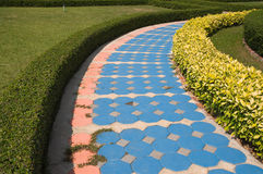 Pathway in the garden Royalty Free Stock Photos
