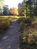 Pathway through garden Stock Photos