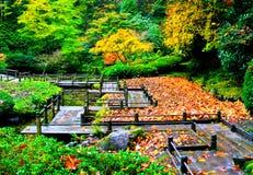 Pathway Through a Garden stock images