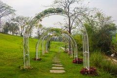 Pathway in garden Stock Photo
