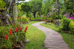Pathway in garden design Stock Photos