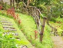 Pathway in the garden Stock Photo