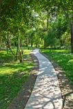 Pathway in garden Stock Images