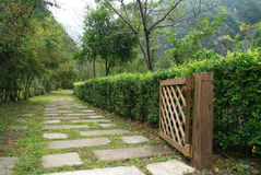 Pathway in garden with wood door Stock Image