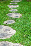 Pathway in grass field Royalty Free Stock Images