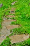 Pathway in a green garden Stock Photos