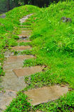 Pathway in a green garden Stock Photo