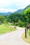 Pathway through a green garden Stock Images