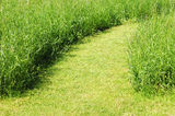 Pathway on green grass field. In sunny day Royalty Free Stock Images