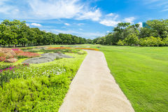 Pathway in green grass field in big city park.  Stock Images