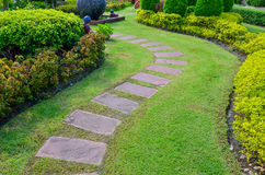 pathway with green grass in garden Stock Image