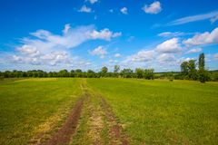Landscape at Sopot in Vinkovci. A pathway through the green meadow next to river Bosut near Vinkovci, Croatia Royalty Free Stock Photos