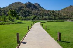 Pathway with green Royalty Free Stock Images