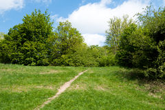 Pathway in green park Royalty Free Stock Photos
