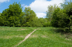 Pathway in green park Royalty Free Stock Photography