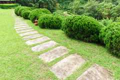 Pathway among greenery lawn with ornamental trees in outdoor garden Stock Photos