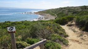 Pathway and hiking trail with ocean rocks and vegetation. Wooden pathway steps handrails green bushes blue sky clouds rocks ocean bushes grass notice board stock photos
