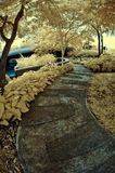 The pathway - infrared Royalty Free Stock Photo