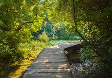 Pathway in KRKA park at Croatia Royalty Free Stock Photography