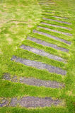 The Stone block pathway in the lawn Royalty Free Stock Images