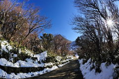 Pathway leading to hot springs in Japan Royalty Free Stock Photos