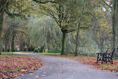 Pathway in a local park. At Autumn time, leaves on the ground cold windy weather 2016 UK Royalty Free Stock Photos
