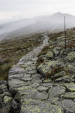 Pathway lower tatra mountains. Landscape of lower tatra mountains with pathway and fog Stock Images