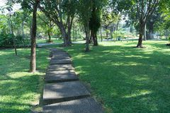 Pathway in a lush park. Pathway in a lush green park Stock Photo