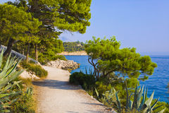 Pathway at Makarska, Croatia Royalty Free Stock Photography