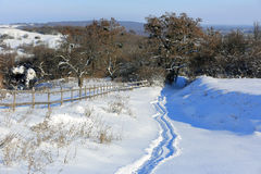 Pathway on meadow in winter time Stock Image