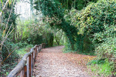 Pathway at Minturno Stock Photos