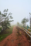 Pathway in the mist Royalty Free Stock Photos