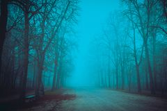 Pathway in misty park Royalty Free Stock Images