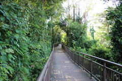 Pathway at Mount Faber Royalty Free Stock Photos