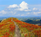 Pathway on mountain ridge Royalty Free Stock Photography