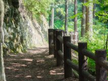 The pathway in the mountain to reach Hossawa Waterfalls in Hinoh. Narrow pathway found in the forest and the mountain before arriving at the Hinohara village Stock Photo