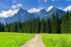 Pathway in mountains stock photography