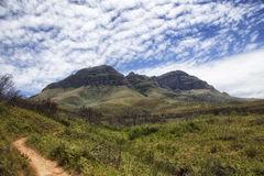 Pathway in mountains in south africa. Pathway in mountains in a nature reserve in south africa Royalty Free Stock Image