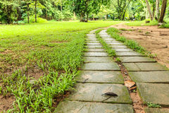 Pathway. In national park for many activity jogging walk etc Royalty Free Stock Images