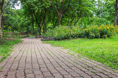 Pathway in nature Stock Images